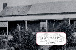 Oxenberry experience Logo