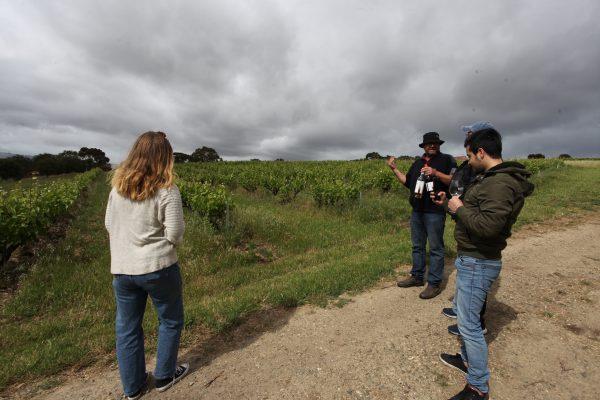 Biodynamic Wine Tour 3