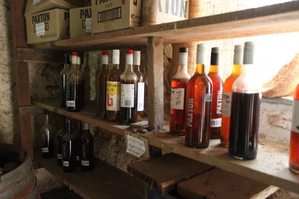 Biodynamic Wine Tour 4