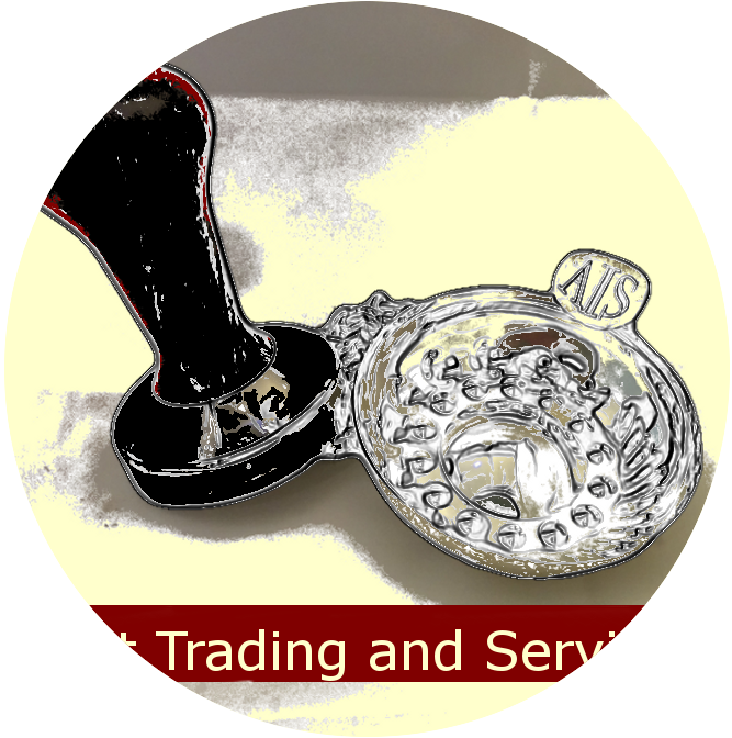 berliat trading and services logo website
