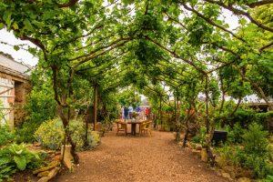 Hutton Vale Farm wine tasting and walking garden Tour