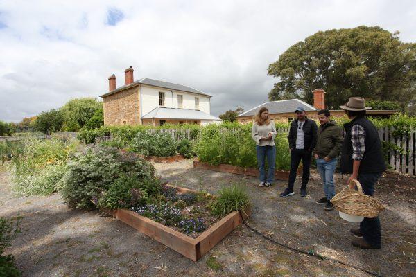 Edible Garden Experience Home