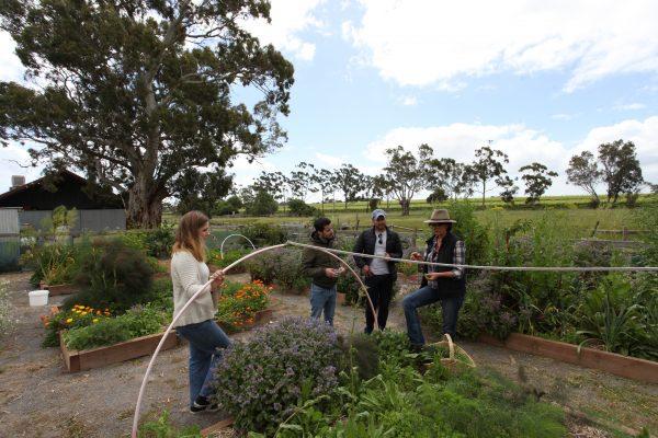 Edible Garden Experience 3