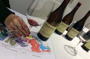 Barolo Wine Tasting Palladino e1431536182905