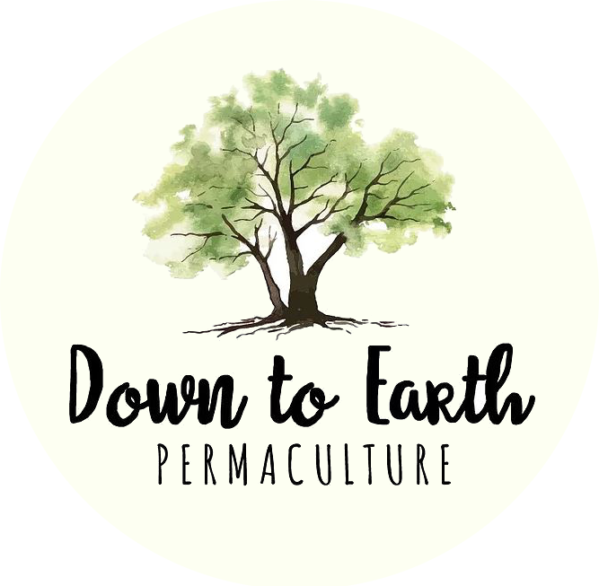 Down to earth permaculture logo
