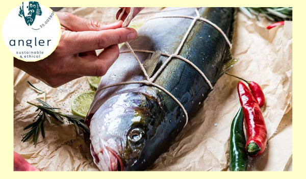 Angle Sustainable Fish Masterclass