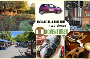 Adelaide Hills Food tour main picture